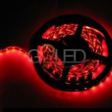 Vízálló piros LED szalag 3528 60 SMD/m 5m